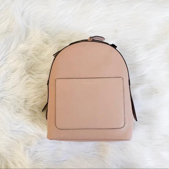 Petal Pink Fiorelli Anouk Backpack